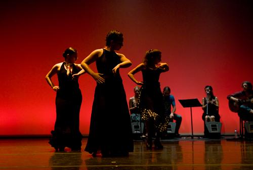 caminos-del-flamenco-2