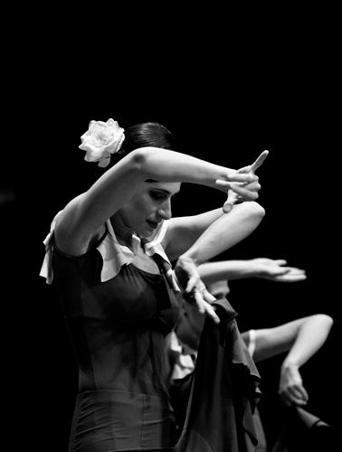 caminos-del-flamenco-24