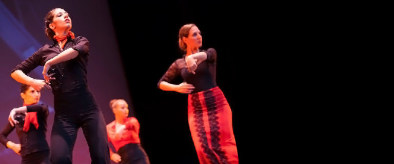Παραστάσεις & Events, Flamenco Rueda