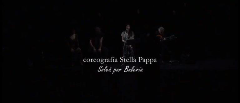 Solea-por-buleria-Flamenco-Rueda-Diccionario-de-una-flamenca-Neos-Kosmos-Theater-2015