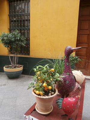 ekpaideftika-taxidia-ispania-flamenco (28)